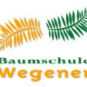 LOOK 22 LogoDesign - Baumschule Wegener